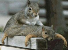 Aaah....... Massage feels nice!