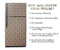 I Wallpapered the Fridge