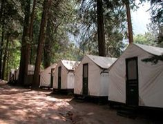 How Yosemite campers were exposed to lethal hantavirus