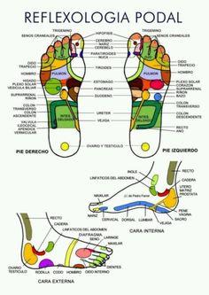 Un sencillo esquema para descubrir la #reflexología podal :) #masajes #salud