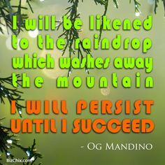 """""""I will be likened to the raindrop which washes away the mountain. I will persist until I succeed."""" Og Mandino from Ep 129: Bridal Industry Disruptor – Danielle Tate of MissNowMrs.com - BizChix.com/129 Og Mandino Quotes, Inspirational Text, Quotes About Everything, Self Control, Rain Drops, You Deserve, Make You Feel, Inspire Me, You Changed"""