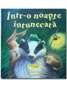 Intr-o noapte intunecata - InfoDar 20 lei