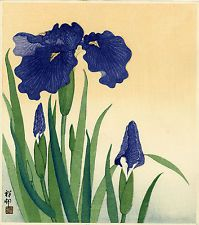 koson prints - Google Search