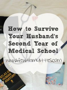 Pre Med in Italy? Medical school in Italy? Help!?