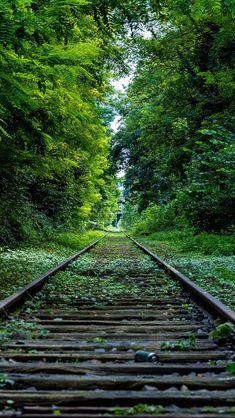 Wooden Retro Railroad Grass Trees #iPhone #5s #wallpaper
