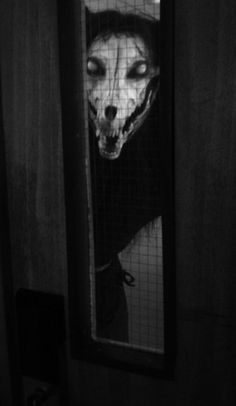 Welsh Christmas tradition: The Mari Lwyd, a skeletal horse.