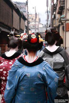 Tuchas en Kyoto