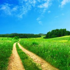 Country road take me home. All Nature, Amazing Nature, Landscape Pictures, Nature Pictures, Iphone 6 Plus Wallpaper, Felder, Take Me Home, Live Wallpapers, Stunning Wallpapers