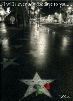 Michael Jackson in the 'Hall of Fame' Michael Jackson Wallpaper, Michael Jackson Kunst, Michael Jackson Pics, Paris Jackson, Lisa Marie Presley, Hollywood Walk Of Fame, Janet Jackson, Indiana, Jackson Family