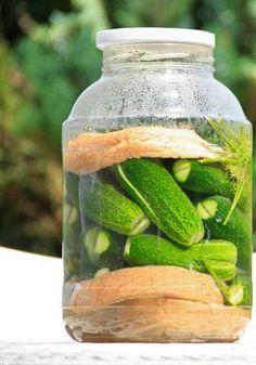 Így készíts tökéletes és roppanós kovászos uborkát | VEOL