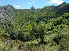 Vista de la Vega del Luciedal | Flickr: Intercambio de fotos