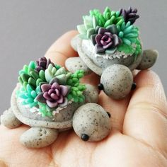 Interesting DIY ideas with homemade polymer clay paste - Polymer Clay - FIMO 3 - Cactus Polymer Clay Turtle, Cute Polymer Clay, Cute Clay, Polymer Clay Projects, Polymer Clay Charms, Polymer Clay Creations, Diy Clay, Clay Figures, Clay Animals