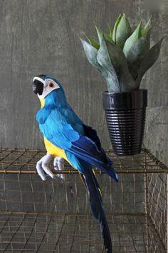 Faux Blue Parrot #fauxbirds #fabulousinfaux #homestyle #uniquepieces #rockettstgeorge