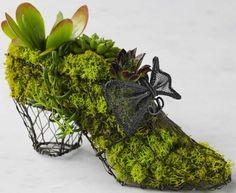 Google Image Result for http://www.alternativeconsumer.com/wp-content/uploads/02011/04/green_shoes.jpg
