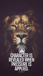 motivational wallpapers with quotes for mobile Fullhd Wallpapers, Wallpapers En Hd, Wallpapers Android, Lion Wallpaper Iphone, Animal Wallpaper, Wallpaper Quotes, Lion Images, Lion Pictures, Tattoo Papier