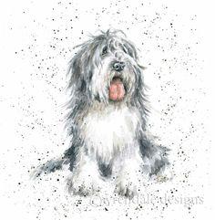 Wrendale Designs A Dog's Life Greeting Card Old English Sheep Dog Animal Paintings, Animal Drawings, Art Drawings, Pencil Drawings, Watercolor Animals, Watercolor Paintings, Watercolour, Wrendale Designs, Dog Artwork