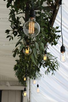 Wedding flowers and styling in Wanaka, festoon lights, wedding lighting