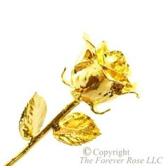 home 24k gold dipped rose collection 24k gold dipped rose