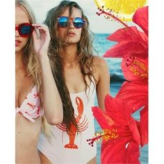 Do you like this STEFF DELUXE CRYSTAL RED SUNGLASSES || WILDFOX SUN