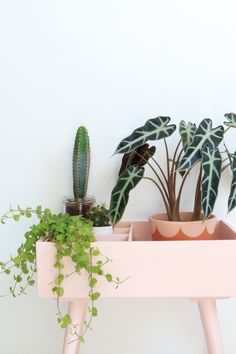 Lichtroze plantenkastje - Enter My Attic