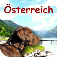 Promocodes für Hundezonen Österreich App - Gratis iPhone App abstauben. :-) Iphone App, Dogs, Animals, Pet Dogs, Animales, Animaux, Doggies, Animal, Animais