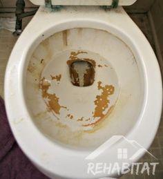 Brown Ring In Toilet Hard Water