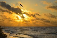 Good morning, Galveston!