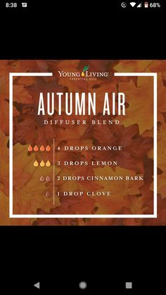 Young Living Diffuser, Air Diffusers, Home Scents, Diffuser Blends, Young Living Essential Oils, Health And Wellbeing, Autumn, Reading, Books