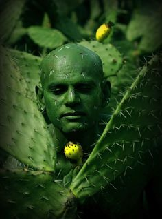 Άνθρωπος και φύση γίνονται ένα-Johannes Stotter