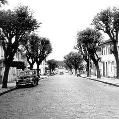 Rua Bela Cintra na década de 50