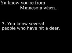 self included. in town no less! the deer lived, I was going REALLY slow cuz I was. watching for deer of course! Minnesota Funny, Thief River Falls, Park Rapids, White Bear Lake, North Dakota, Low Key, Back Home, Laughter, Sayings
