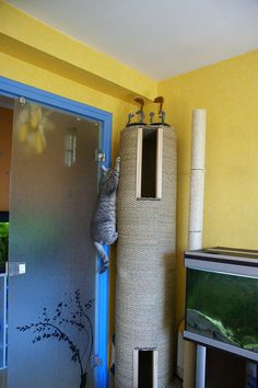 Even better than the 8 ft one we made! this has an interior tunnel! A homemade cat tree! - Blog Liouxious
