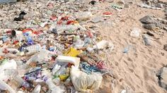 Image result for beach debris