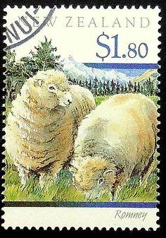 Romney sheep New Zealand -Framed Postage Stamp Art 19911