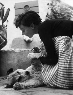 Audrey Hepburn plays with a dog on her honeymoon in Switzerland, 1954.