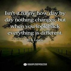 Isn't it funny how day by day nothing changes, but when you look back everything is different. Great Quotes, Quotes To Live By, Me Quotes, Inspirational Quotes, Motivational, Italy Quotes, Nothing's Changed, A Course In Miracles, Think