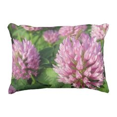 Shop Gentle pink and green clover accent pillow created by SeeingNature. Clover Flower, Clover Green, Wedding Color Schemes, Wedding Colors, Pink And Green, Purple, Outdoor Cushions, Outdoor Pillow, Pillow Fight
