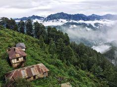 Kufri, Himachal Pradesh, July 2015 PC - Rakshit Makkar #india #bharat #nature #hindustan #shimla #himachal