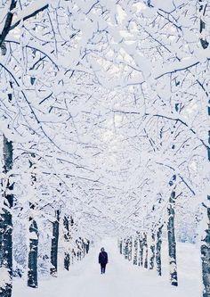Winter Wonderland, Reykjavík, Iceland #winter