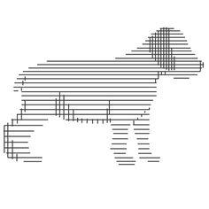 boardwell dog — Designspiration
