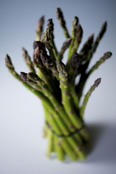 DOF asparagus #food #stills #photography
