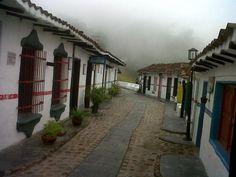 Charallave , en los Valles del Tuy . Estado Miranda. Venezuela.