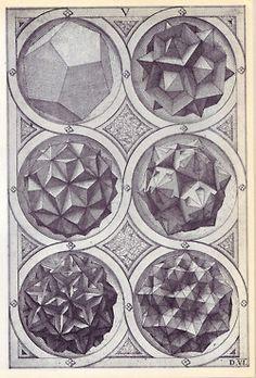 PaleSpectreAndShadow | thehouseofhiddenlight: #Polyhedra #Polyhedron...