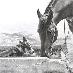 "Western Art by Mary Ross Buchholz, ""Drinking Buddies"" Horse Drawings, Animal Drawings, Art Drawings, Pencil Drawings, Western Photo, Horse Artwork, Cowboy Art, Equine Art, Horse Love"
