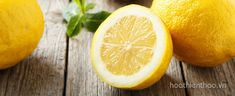 The lemon is a very healthy fruit that is loaded with vitamin C and fiber. Here are 6 ways that lemons can improve your health. Healthy Fruits, Healthy Recipes, Healthy Food, Salsa Hoisin, Eat Better, Getting Rid Of Dandruff, Lemon Diet, Lemon Essential Oils, Cheese