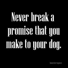 'Never Break a Promise that You Make to Your Dog', never❤️