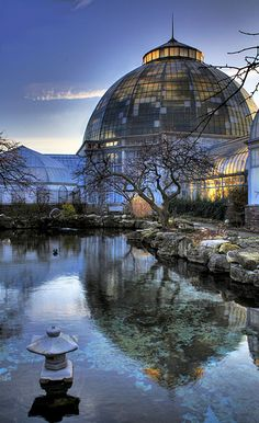 Belle Isle Conservatory on Belle Isle in Detroit, MI- a little respite from the world!