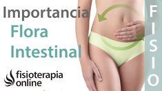 Cómo influye el estado de la flora intestinal en nuestra salud