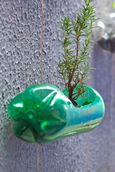 Who knew? You can turn those leftover soda bottles into a vertical garden with some supplies and a bit of crafting skills. This is Do-It-Yourself (DIY) vertical gardening. This concept come to us f…