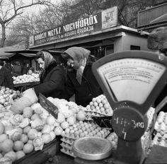 60 Ft-os tojás? Atyaég! Mire figyelj a tojás vásárlásakor, az árán kívül? Megmutatom!
